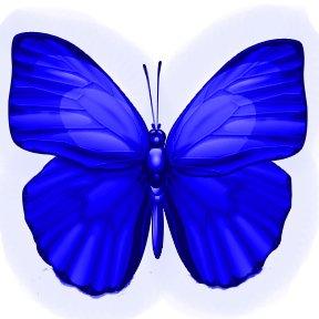 Inspiring Life Butterfly jpg